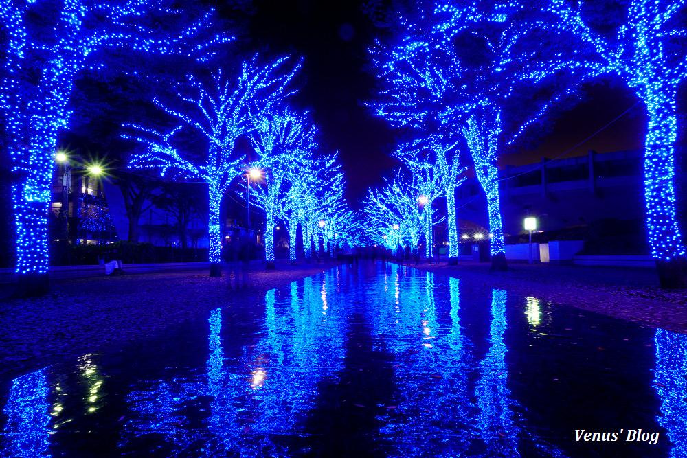 【東京聖誕節】青の洞窟 SHIBUYA 代代木公園最新版2016.11.22~2017.1.9