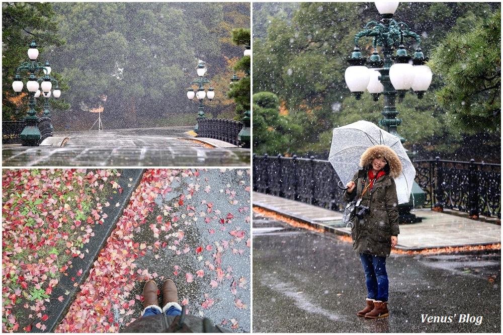 【東京必遊】皇居參觀,遇上54年來東京最早初雪,原來東京人最愛到皇居賞雪景