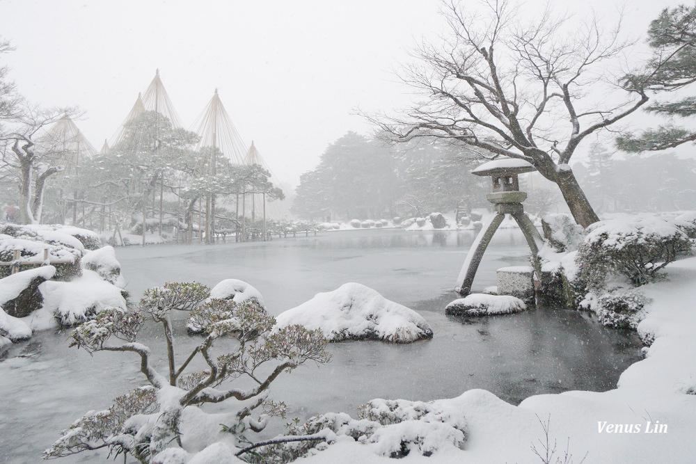 金澤|雪之兼六園,此生必賞雪吊絕景!