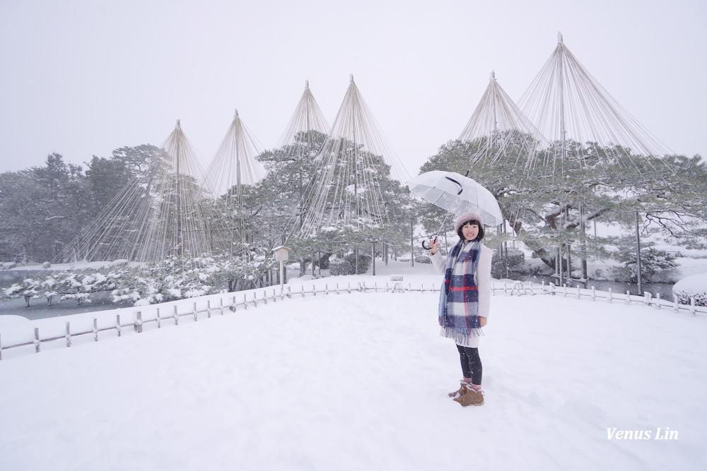 金澤,雪之兼六園,下雪的兼六園,雪吊絕景