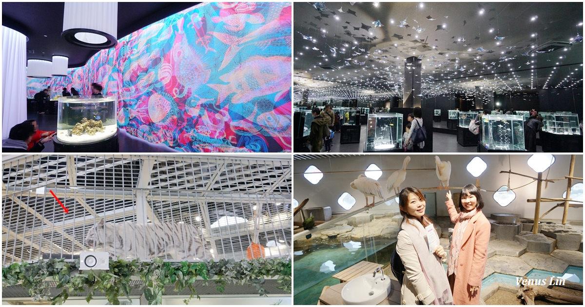 大阪EXPOCITY|NIFREL活生生的博物館,精彩的白老虎餵食秀、跟鳥類零距離