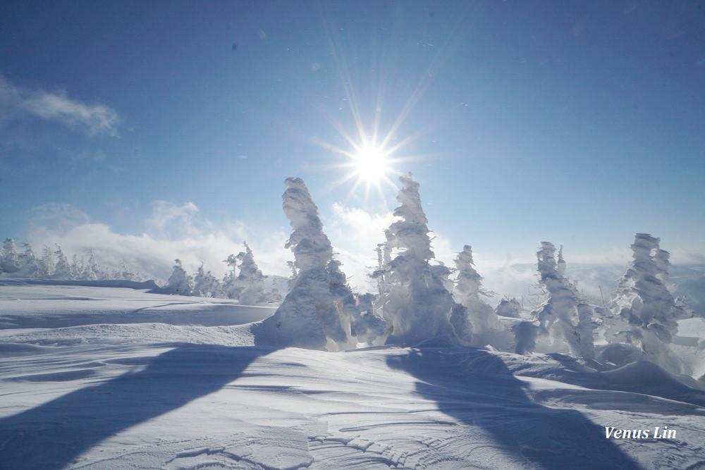 青森 搭纜車上八甲田山賞樹冰、兩年內來三次終於賞到震撼樹冰