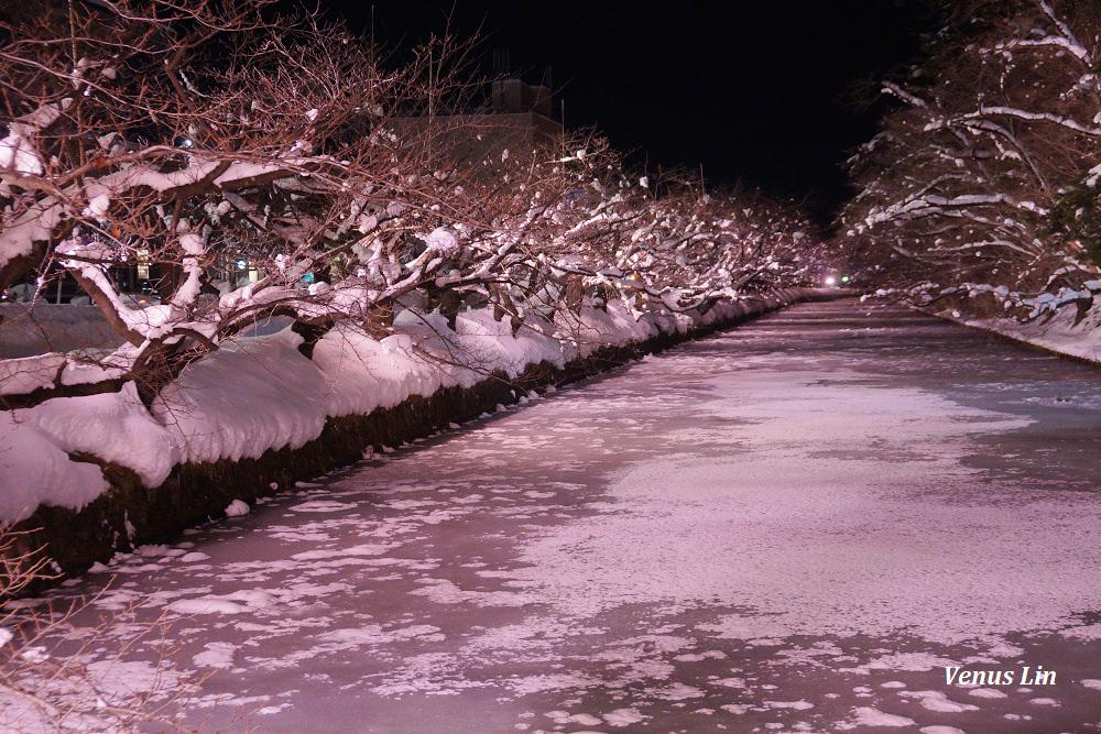 弘前城雪夜櫻,青森冬季活動,青森賞櫻,弘前城櫻花,弘前城星巴克
