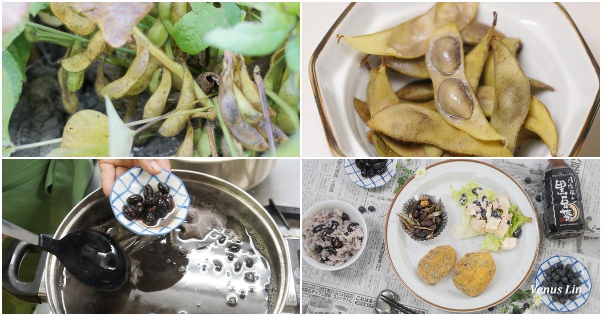 兵庫.篠山|丹波黑豆的故鄉、煮黑豆,皮不皺的小秘密、黑豆可樂餅食譜