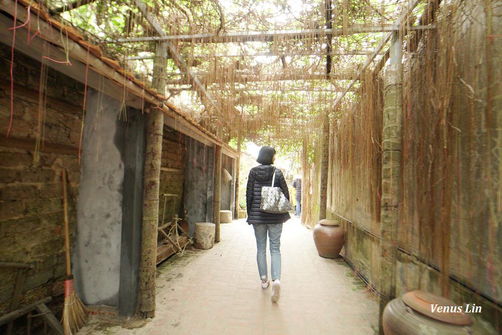 唐林古村,唐林古村包車,唐林古村交通方式,北越,河內一日遊