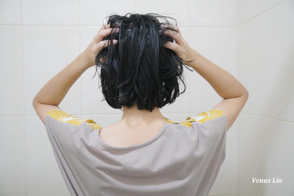 康定酵素植萃洗髮乳,康定洗髮乳,細軟髮洗髮精,扁塌髮適合的洗髮精