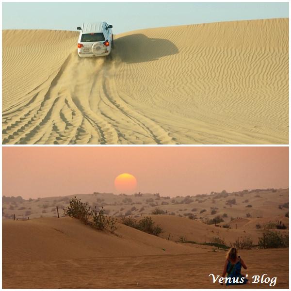 【杜拜行】杜拜沙漠衝沙 Desert Safari、刺激好玩極了!杜拜必玩活動!
