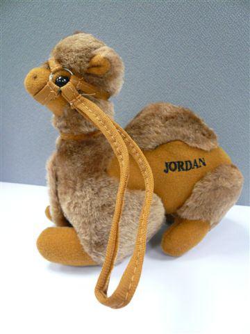 【約旦】小駱駝