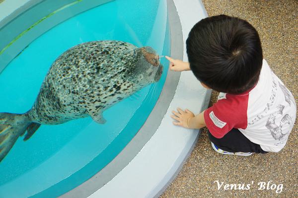 【京都景點推薦】京都水族館、Cafe & Restaurant greenhouse Collabo平價午餐