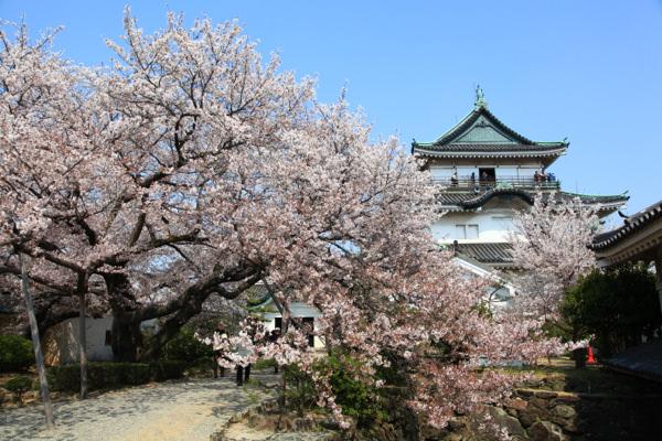 【2012日本賞櫻】京都賞櫻即時連線DAY3 DAY 4 (行程+旅行日記)