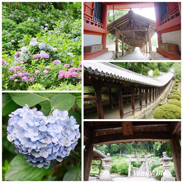 nEO_IMG_岡山攝影比賽_6485