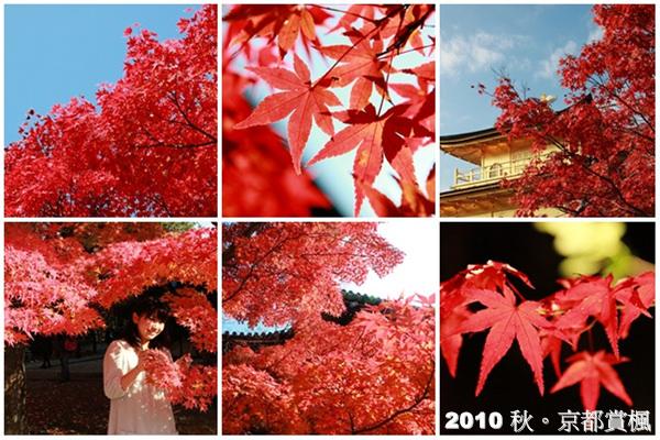 【日本京都】2010年。秋。賞楓 – 序