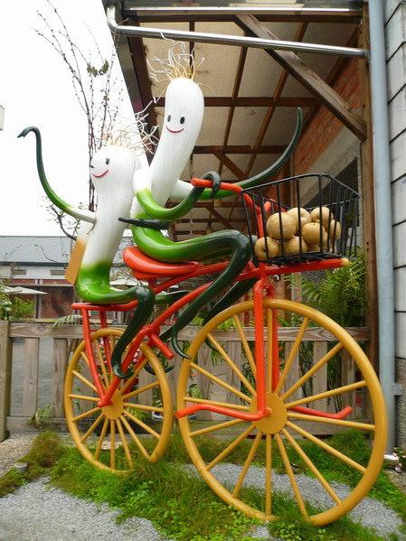 【宜蘭三星】三星蔥博物館 / 三星蔥大餐